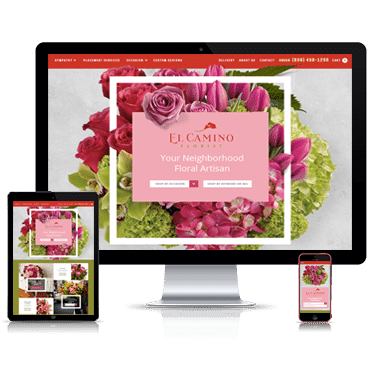 elcamino-web-design-small
